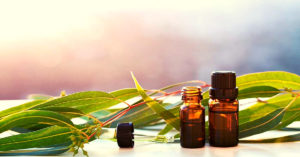 Eucalyptus Essential Oil Benefits For Skincare, Joint Health & Congestion