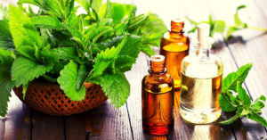 6 Powerful Peppermint Essential Oil Benefits For Stress, Skin, Hair, Focus, Energy & More!