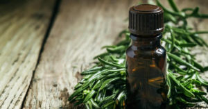 Tea Tree Essential Oil Uses And Benefits (And How to Use)