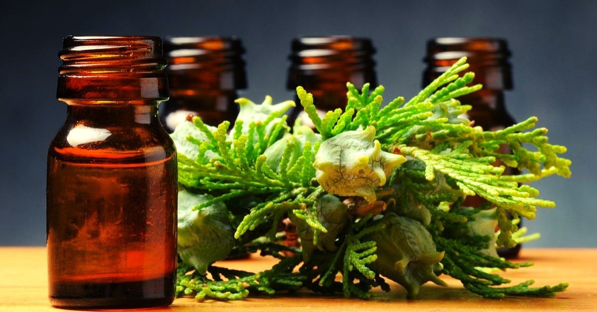 uses for cypress essential oil