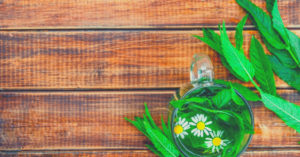 Roman Chamomile Essential Oil Uses (Unique & Powerful!)