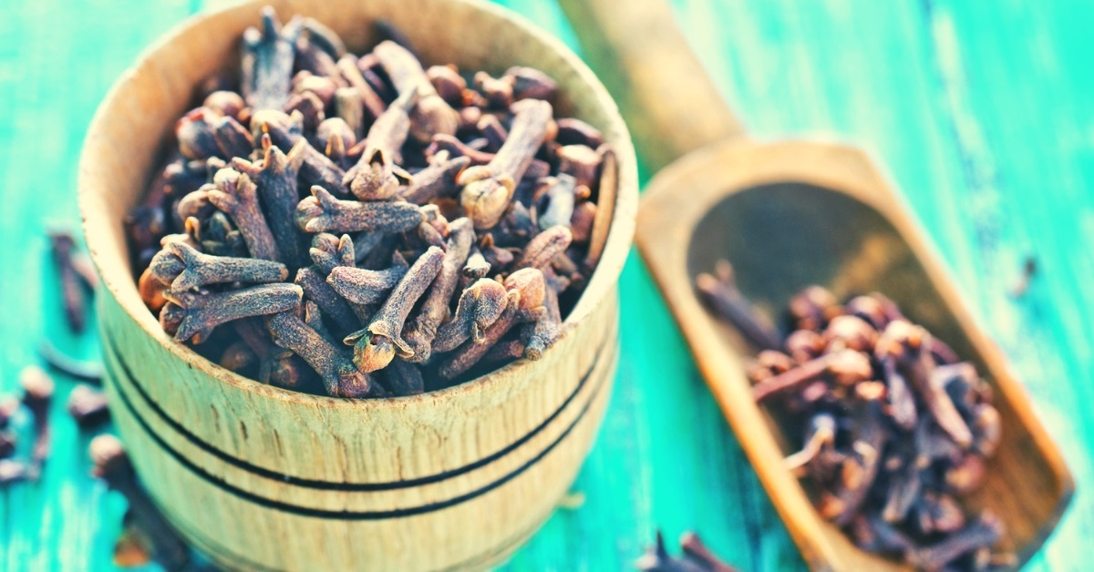 uses of clove bud essential oil
