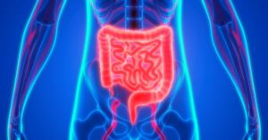 Essential Oils for Digestion (Best Oils To Use & How To Guide)